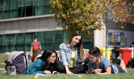 Facultad de Economía y Negocios se reacredita como Campus Sustentable